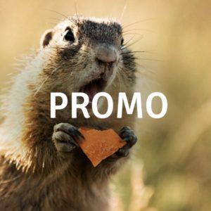 En promotion